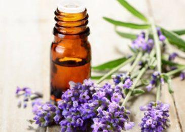 Lavender skin