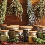 What is Phytotherapy?