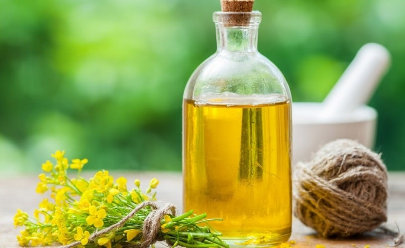 Canola Oil - A Few Benefits with Good Effects