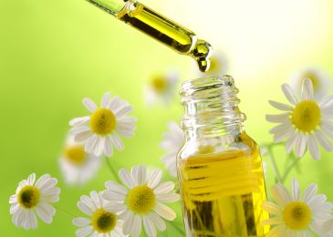 Benefits of Chamomile and Her Uses