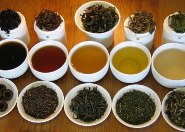 Tasting Some Of The Best Tea Varieties In The World