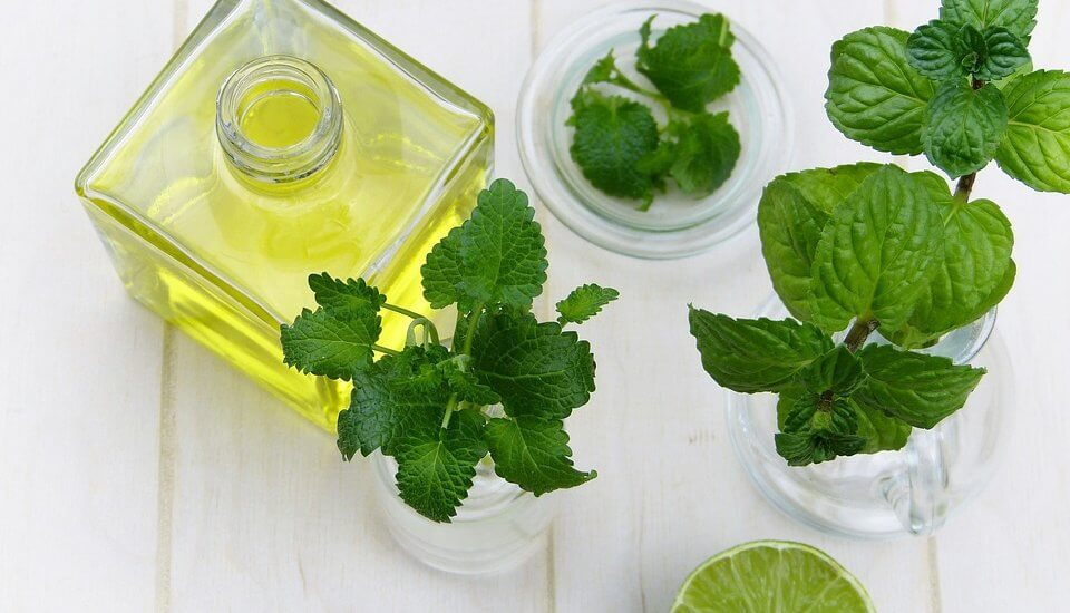 Benefits of Bio Peppermint Essential oil