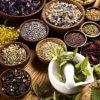 Phytotherapy: Complementary drugs in limelight in 21st century
