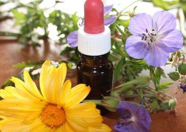 Medicinal herbal