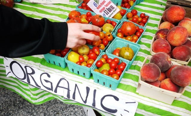 What You Need to Know about Organic Foods