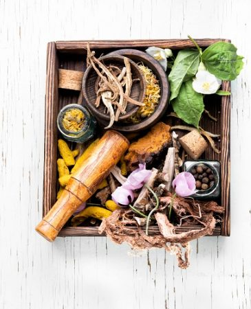 Herbal Therapy Uses