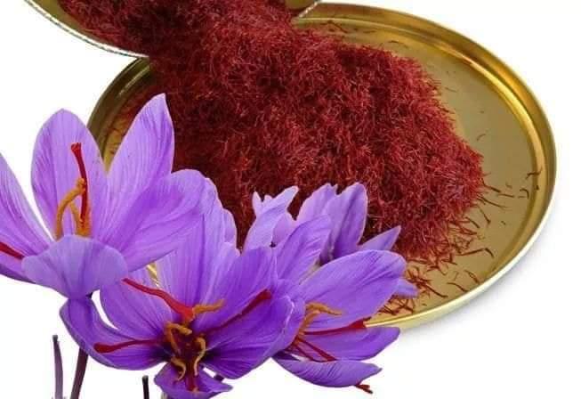 Best 11 Benefits of Saffron - Red Gold
