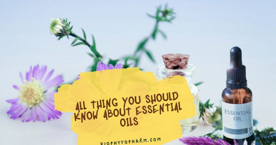 All Thing you Should Know About Essential Oils