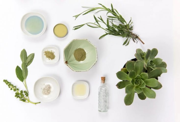 Natural Cosmetic Products for Cleaning Dry Skin