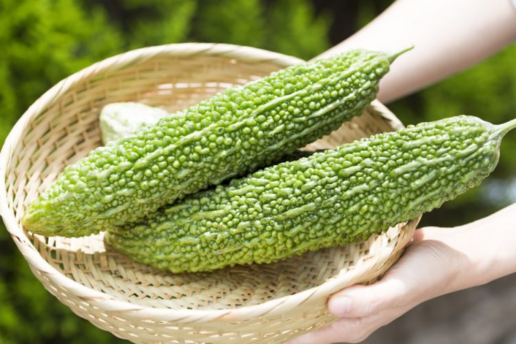 THE 7 SWEET HEALTH BENEFITS OF BITTER MELON