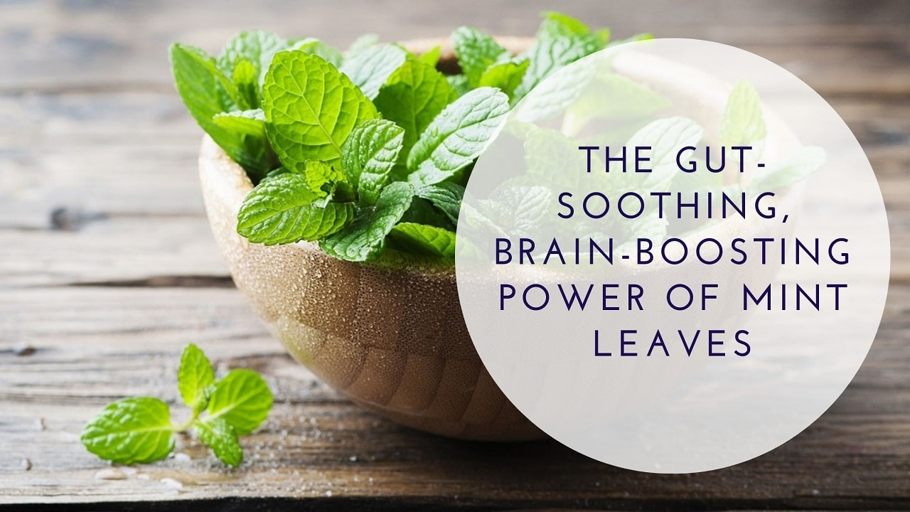 The Gut-Soothing, Brain-Boosting Power of Mint Leaves