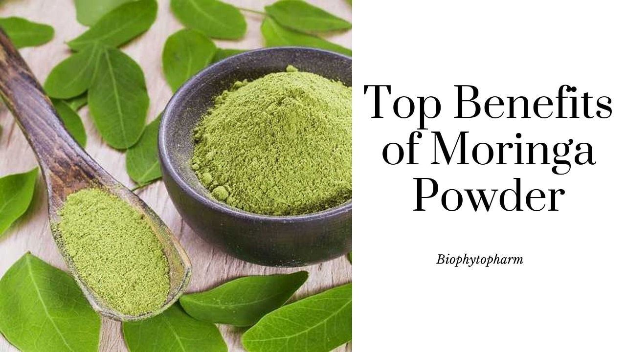 Top Benefits of Moringa Powder