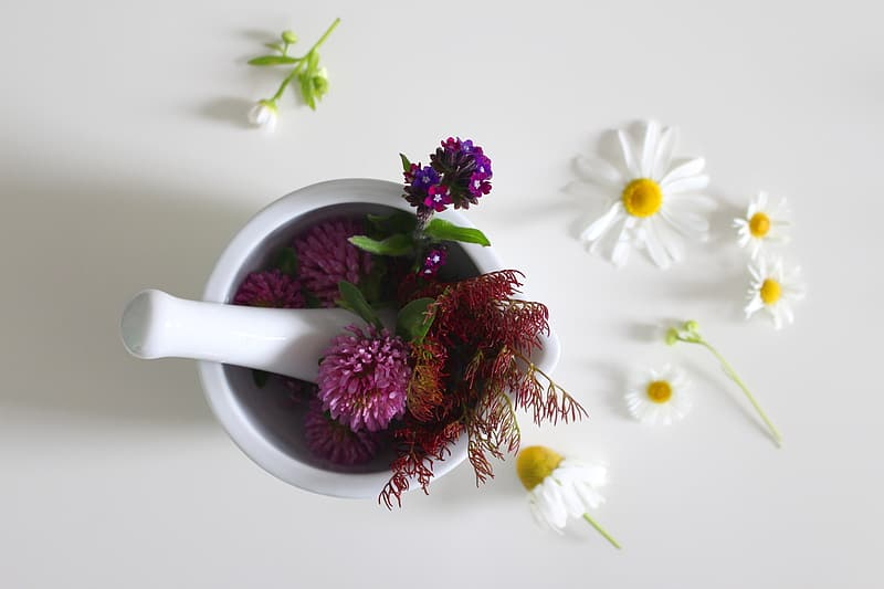 Best Natural Remedies at Home