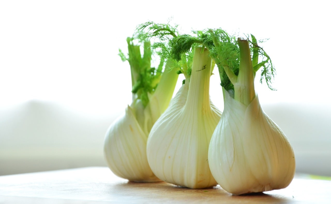 FENNEL ROOT – 3 REASONS WHY YOU SHOULD EAT IT!
