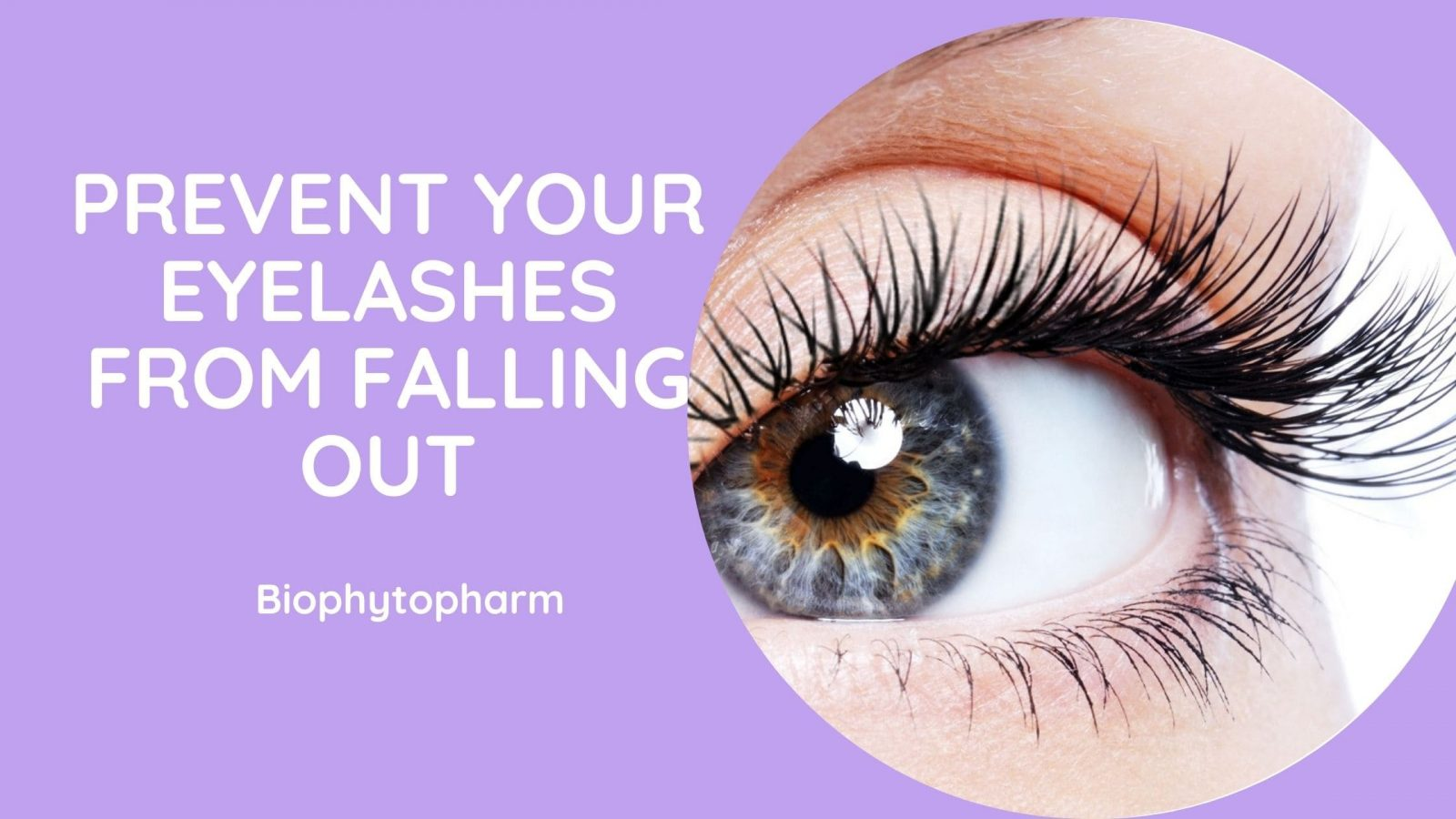 Prevent your Eyelashes From Falling Out