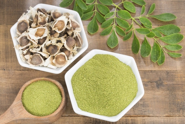 Versatile & Nutritious Is Moringa The Newest Superfood