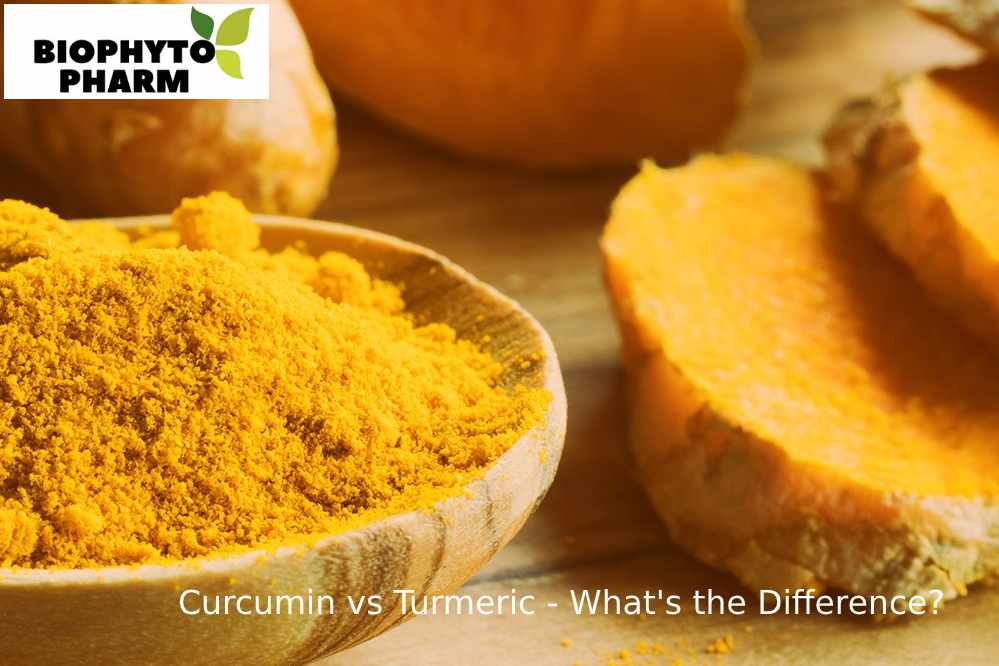 Curcumin vs Turmeric - What's the Difference