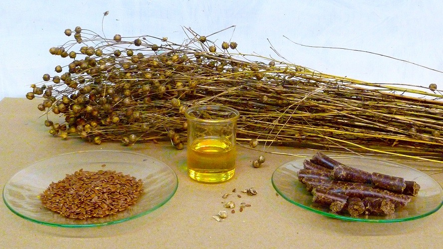 BEST FLAXSEED OIL fOR HEALTH