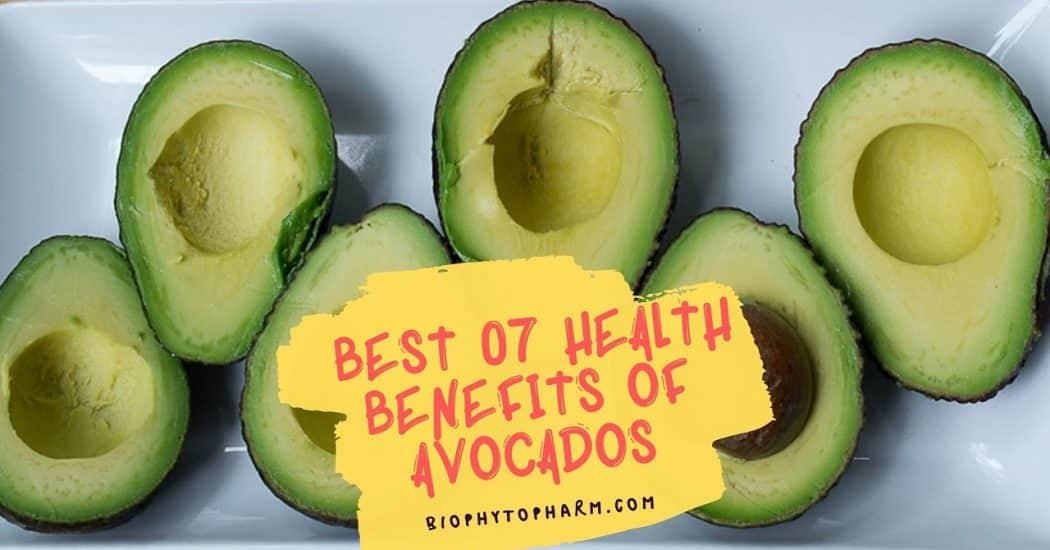 Best 07 Health Benefits of Avocados