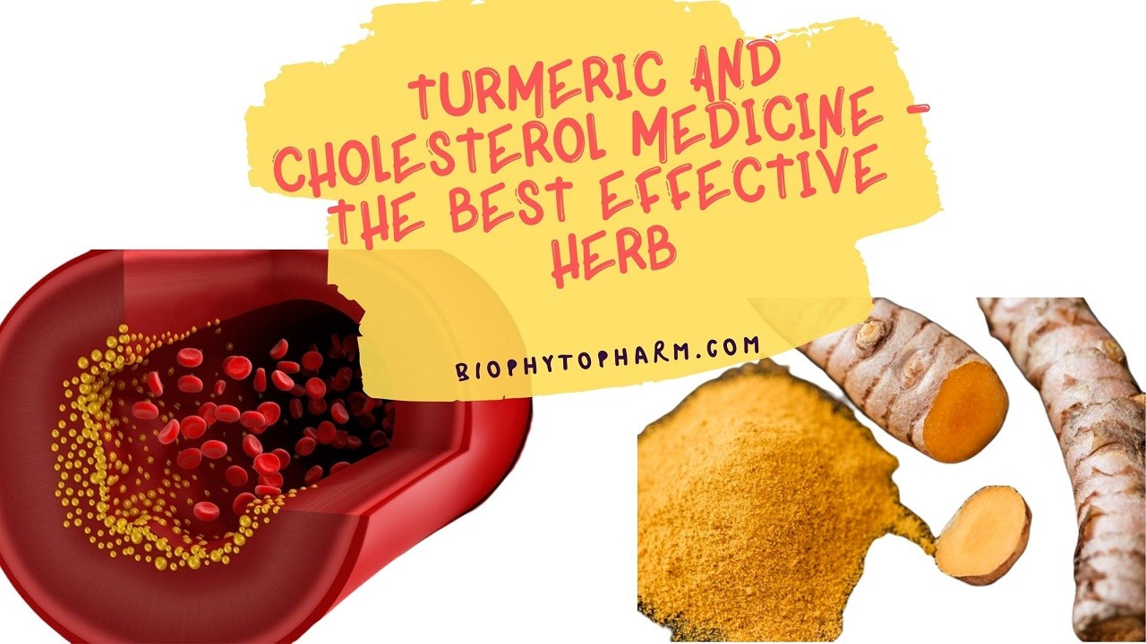 Turmeric and Cholesterol Medicine - The Best Effective Herb