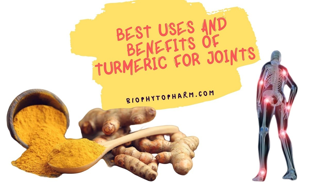 Best Uses and Benefits of Turmeric for Joints