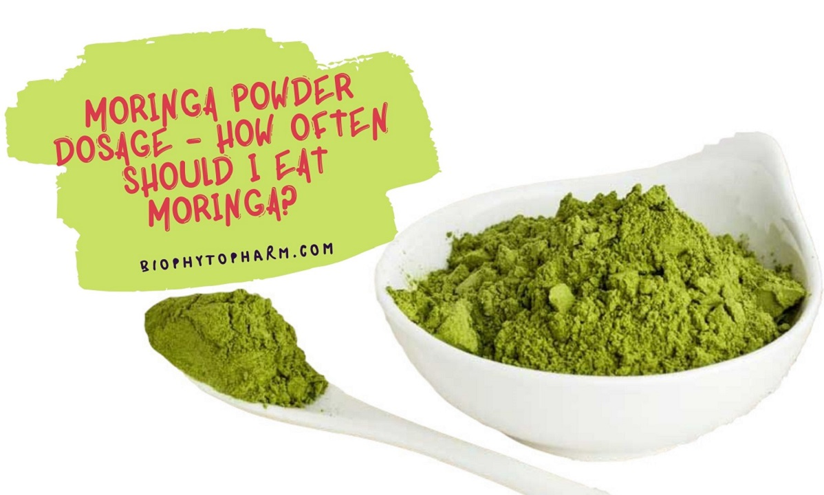 Moringa Powder Dosage - How Often Should I Eat Moringa